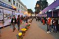 Science & Technology Fair 2012 - Urquhart Square - Kolkata 2012-01-23 8838.JPG