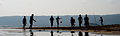 Seaside Silhouettes (Imagicity 529).jpg