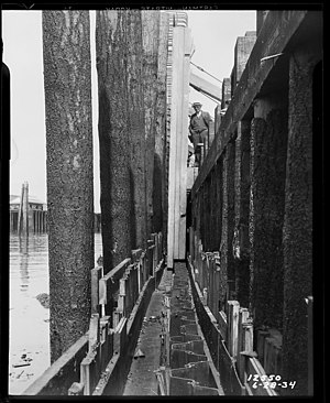 Alaskan Way Seawall - Seawall construction, 1934