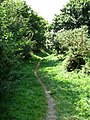 Section of Weavers' Way - geograph.org.uk - 522236.jpg