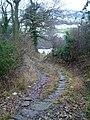 Seggymire Lane - geograph.org.uk - 124582.jpg
