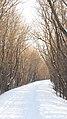 Selkirk Park, Manitoba (484580) (9445450101).jpg