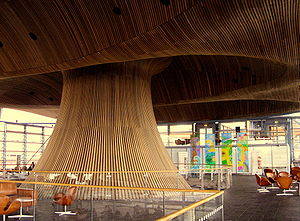 Thuja plicata - Canadian western redcedar cowl in the National Assembly for Wales