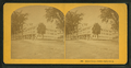 Senter House, Center Harbor, N.H, from Robert N. Dennis collection of stereoscopic views 2.png