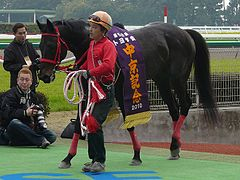 Shadow-Gate-horse20100313.jpg