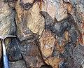 Shatterconed sandstone (Mississagi Formation, Paleoproterozoic, ~2.3-2.4 Ga; Ramsey Lake Road outcrop, Sudbury, Ontario, Canada) 115 (47768088481).jpg