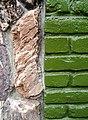 Slate vs brick (320311752).jpg