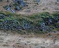 Slopes north of the ringroad, between Fáskrúðsfjörður and Stoðvarfjörður.jpg