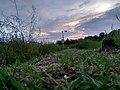 Small Wind mill and Evening sunlight.jpg
