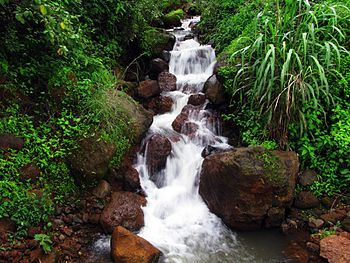 Small stream at Satara.jpg