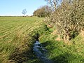Small stream near Pasture House - geograph.org.uk - 650913.jpg