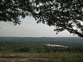 Snap from Bannerghatta National Park Bangalore 8544.JPG