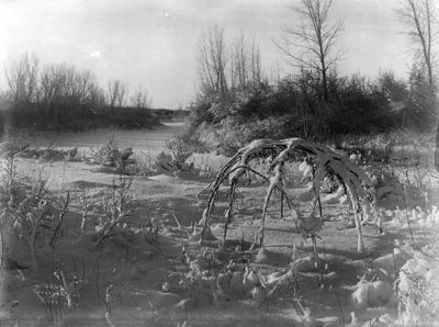 Frame of Crow sweat lodge in snow