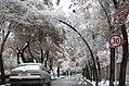 Snowy day in Mashhad (7 851009 L600).jpg