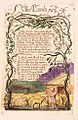Songs of Innocence copy B 1789 Library of Congress object 29 The Lamb.jpg