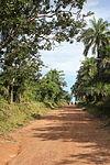 South of Kalangba en route to Outamba-Kilimi Park.JPG