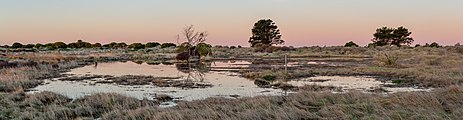 Southshore Spit Reserve, Christchurch, New Zealand.jpg