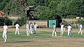 Southwater CC v. Chichester Priory Park CC at Southwater, West Sussex, England 099.jpg