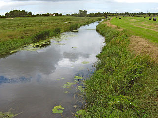 Sowy River artificial drainage channel in Somerset, England