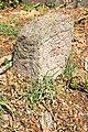 Spomenici na seoskom groblju u Nevadama (83).jpg