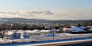 Saint-Léonard, New Brunswick Town in New Brunswick, Canada