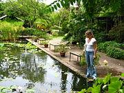 Botanical Garden Restaurant Montreal Menu