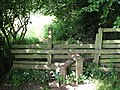 Stile on the way to the Devil's Pulpit - geograph.org.uk - 480083.jpg