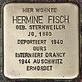 Stolperstein für Hermine Fisch (Heidelberg).jpg