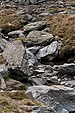 Stones Fagaras Mountains 001 (RO).jpg