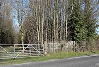 Storeton station, site of northbound platform.jpg