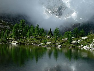 Montane ecosystems - A subalpine lake in the Goms district of the Swiss Alps