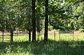 Sulphur Springs Cemetery.JPG