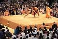 Sumo tournament (15711594431).jpg