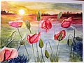 Sunrise with flowers and sky -- 13 of 33.jpg