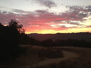 Topanga State Park - Sunset on the trail to Trippet Ranch.