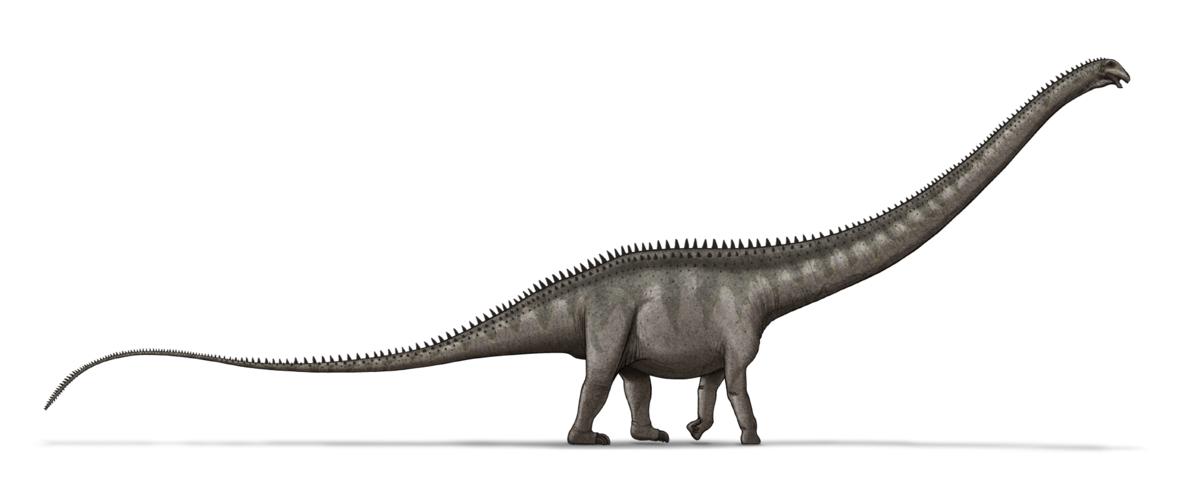 Resultado de imagen para supersaurus