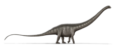 Supersaurus dinosaur.png