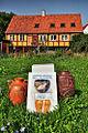 Svaneke - half-timbered house.jpg