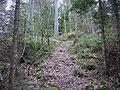 Sweden. Stockholm County. Tyresö Municipality 008.JPG
