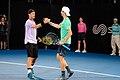 Sydney International Tennis ATP 250 (46001156085).jpg