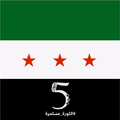 Syrian revolutionary flag—5th anniversary.png