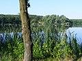 Széki-tó, 2009-07-12 Devecser, 8460 Hungary - panoramio.jpg