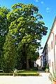 Třeboň - Zámek - Castle Inside Court - View North.jpg