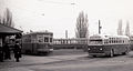TTC Peter Witt streetcars and old style GM bus at the Birchmount loop in 1946.jpg