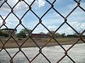 Tampa Greyhound Track; Behind the Fence.JPG