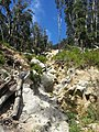 Telegraph Saddle to Sealers Cove Track, Wilsons Promontory National Park 04.jpg