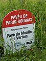 Templeuve secteur pavé du Moulin-de-Vertain (mai2017) (2).JPG