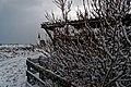 Texel - Den Hoorn - Hoge Achterom - View NE towards NH Kerk in Winter.jpg