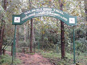 Thattekad Bird Sanctuary - Image: Thattekkad Bird Trial