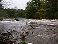 The Breakers rapid, River Ayr - geograph.org.uk - 43225.jpg